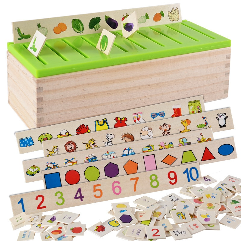 Math and Classification Sorter
